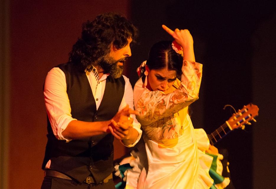 Foto Flamencosaenger und Flamencotaenzerin